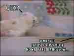 FoczkiRO - Loading 8
