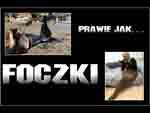 FoczkiRO - Loading 38